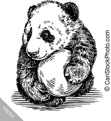 engrave ink draw panda illustration - black and white...