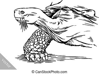 engrave ink draw turtle illustration - black and white ...