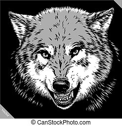 engrave isolated wolf vector illustration sketch