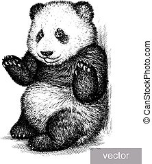engrave panda bear illustration