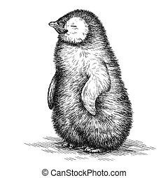 engrave penguin illustration - engrave isolated penguin...