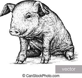 engrave pig illustration - engrave isolated pig vector...