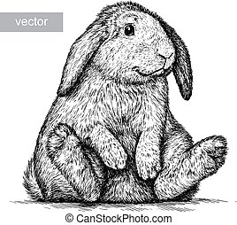 engrave rabbit illustration - engrave isolated rabbit vector...