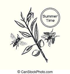 Engraved Vector Coffee tree illustration - Coffee tree...