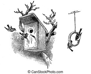 engraving of bird house and food ring