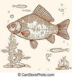 engraving of fish