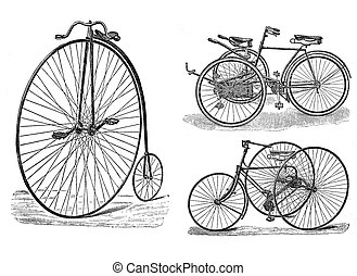 Engraving of vintage tricycle and bike. - Vintage cicycle...