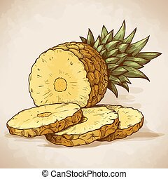 engraving pineapple slices in retro - vector engraving...