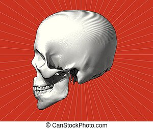 Engraving skull in side view on red BG