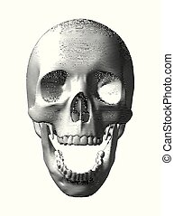 Engraving skull isolated on white background