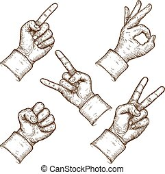 vector illustration of five hands