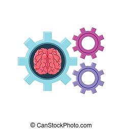 engrenagem, fundo branco, cérebro