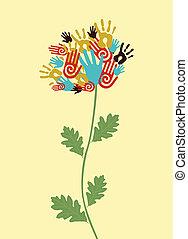 enhed, begreb, blomst