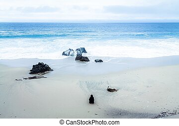 enjoy beach view