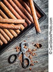Enjoy of cigar
