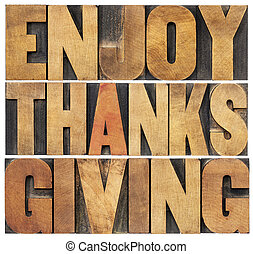 Enjoy Thanksgiving - isolated text in vintage letterpress ...