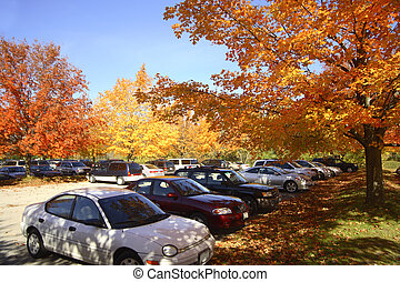 Enjoying fall beauty - full parking at the park