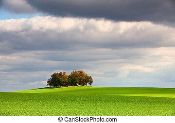enlige, ø, fulde, i, træer, ind, efterår