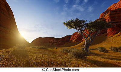 enlige, træ, ind, en, canyon, hos, solopgang, eller, solnedgang