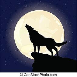 enlige, ulv, illustration