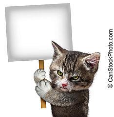 enojado, gato, tenencia, señal