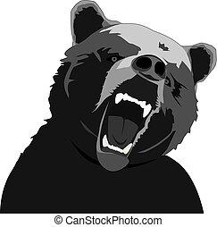enojado, oso