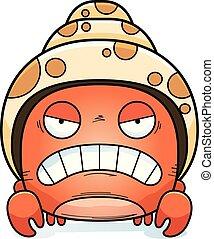 enojado, poco, cangrejo, ermitaño