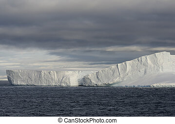 enorme, iceberg, norte, estreito, ponta, península, tabular, antártica, bransfield, antárctico, flutuante