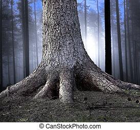 enraizado, árvore