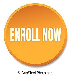 enroll now orange round flat isolated push button