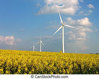 enrolle turbinas, en, rapes, campo, -, energía alternativa