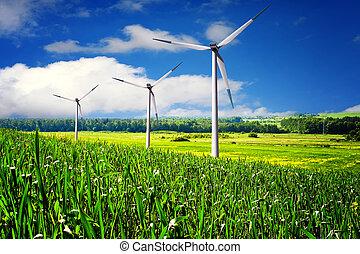 enrolle turbinas, granja, en, verano