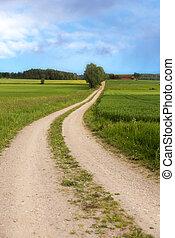 enroulement, chemin terre, dans, été