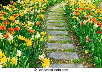 enroulement, jardin pierre, sentier