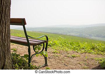 ensam, bänk, nära, träd, med, kullar, framtill