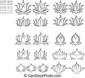 ensemble, 2, lotus