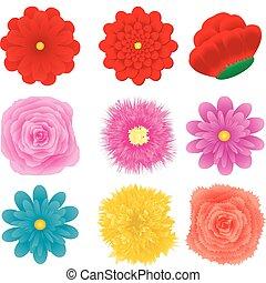 ensemble, 3, fleur, conception, partie, élément