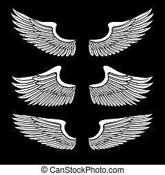 ensemble, ange, isolé, noir, blanc, ailes