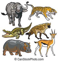 ensemble, animaux, africaine, sauvage