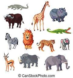 ensemble, animaux, dessin animé, africaine