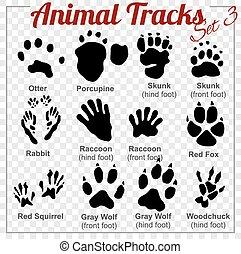 ensemble, animaux, pistes, vecteur, -