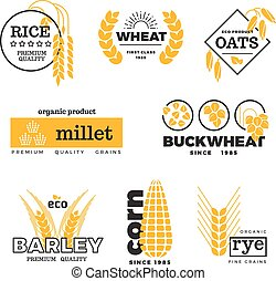 ensemble, blé, vecteur, grain, logo, agriculture organique, agriculture