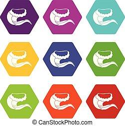 ensemble, bordage, couleur, hexahedron, vague, craquement, icône