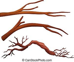 ensemble, branche arbre