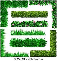 ensemble, cadres, floral, feuilles, vert