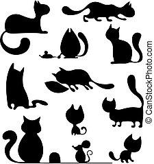 ensemble, chat