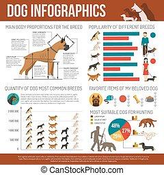 ensemble, chien, infographics