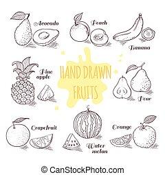 ensemble, contour, griffonnage, illustration, main, fruits, dessiné, slice.