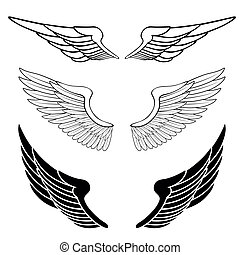 ensemble, de, ailes, isolé, blanc