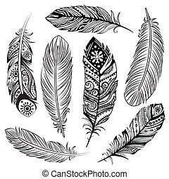 ensemble, de, ethnique, plumes